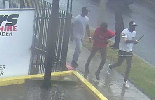 12 Junubin arrested over massive fight in Seaford, Australia