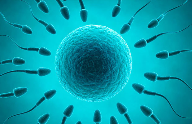Guys, eight ways you are destroying your sperm everyday
