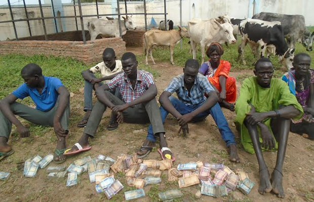 7 thieves including elderly woman arrested in Aweil for stealing SSP 224,500 (PHOTO)