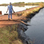 Government to inspect oil pollution impact in oil-rich States