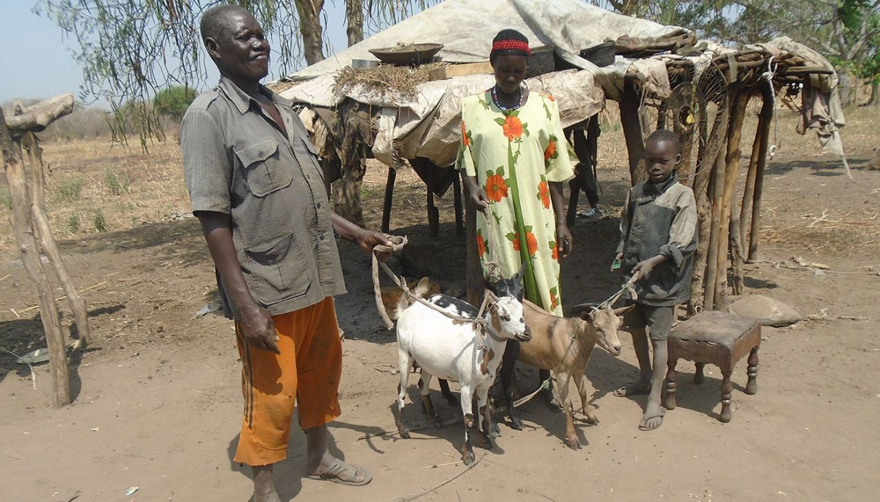 Man caught in the act with goat, blames alcohol