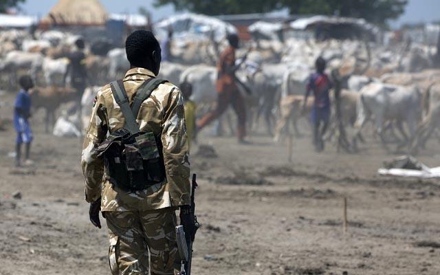 Twic clashes 'claim dozens of lives'