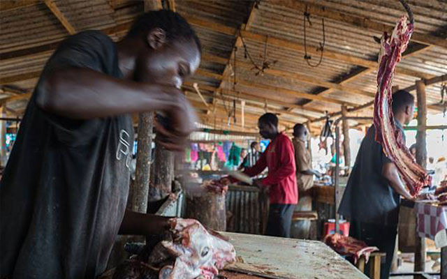 Dog meat sellers arrested, confess to killing over 500 dogs for 'Nyama Choma' in Juba