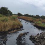 Oil spill in Northern Liech sparks concern