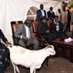 Meet the goat that made it to the State House [PHOTOS]