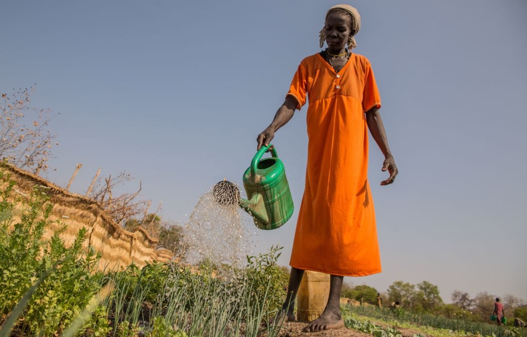 South Sudanese told to grow their own food