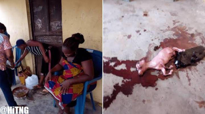 Photos: Woman who has been pregnant for 3 years finally gives birth to a goat