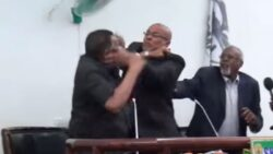 VIDEO: Somaliland Speaker, his Vice, 'exchange blows' in public